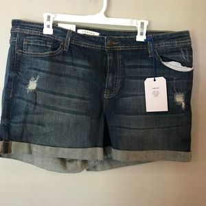 Plus Size Denim Shorts - NWT